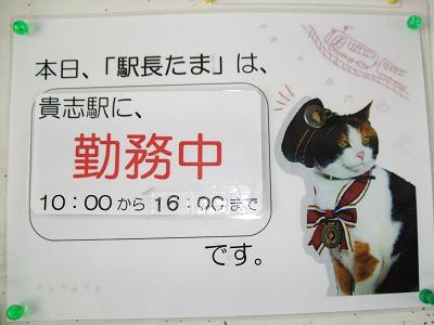2010_05060022.jpg