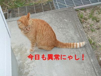 2010_05180003.jpg