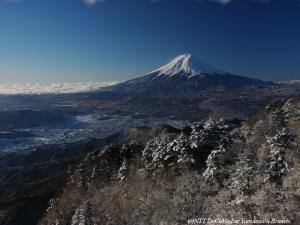 三ツ峠山ライブカメラ画像