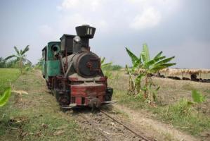 インドネシア さとうきび列車