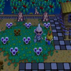 mori0523-1_convert_20100525211305.jpg