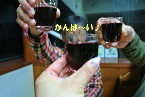 DSC_4741_20120514205321.jpg