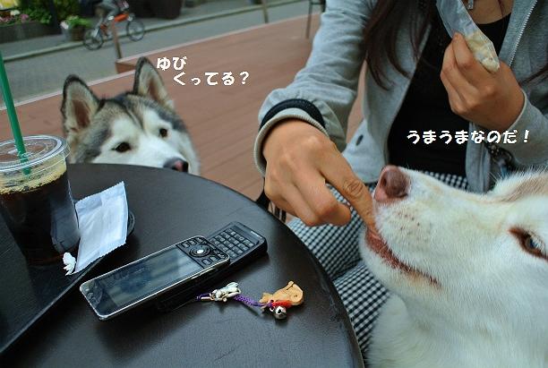 DSC_5021.jpg