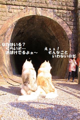 IMG_1393_20111120233012.jpg