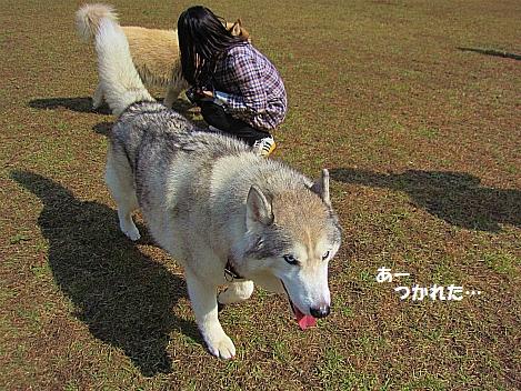 IMG_9875.jpg