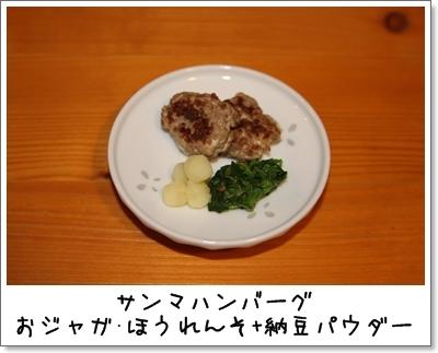 2010_0203_204926AA.jpg