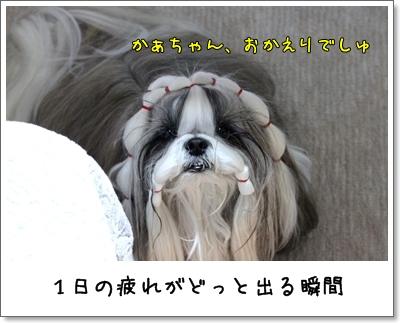 2010_0204_192445AA.jpg