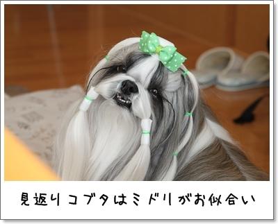 2010_0207_125610AA.jpg