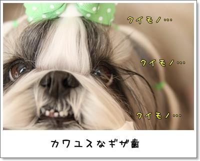 2010_0207_125810AA.jpg