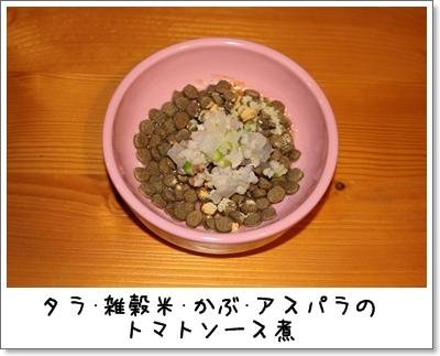 2010_0210_063347AA.jpg