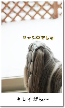 2010_0212_073112AA.jpg