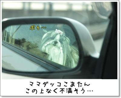 2010_0214_134937AA.jpg