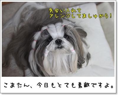 2010_0217_194406AA.jpg