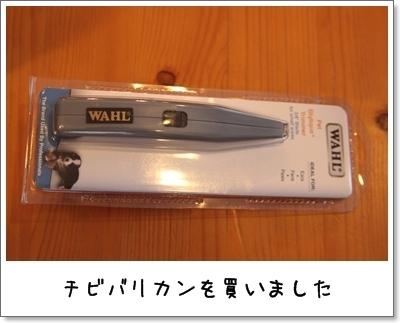 2010_0218_073656AA.jpg