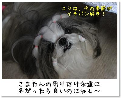 2010_0222_200613AA.jpg