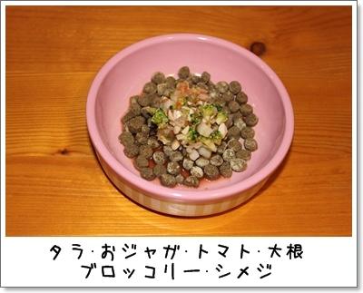 2010_0224_210214AA.jpg