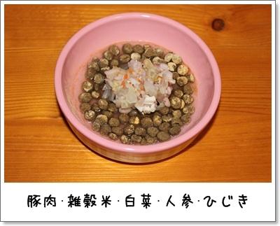 2010_0225_212939AA.jpg