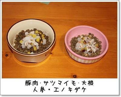 2010_0227_081706AA.jpg