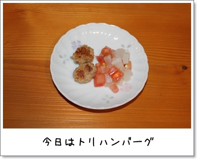 2010_0228_200746AA.jpg