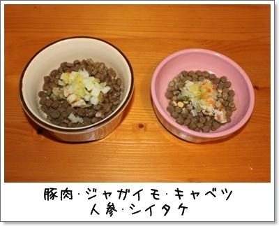 2010_0306_065702AA.jpg