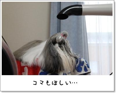 2010_0313_155742AA.jpg