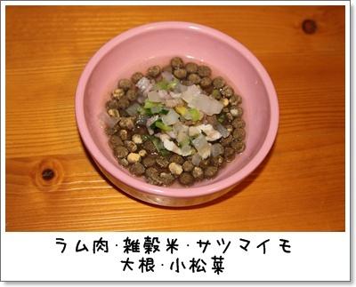 2010_0314_213258AA.jpg