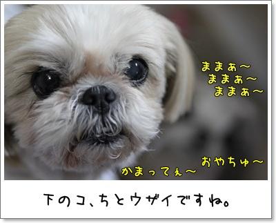 2010_0315_193057AA.jpg