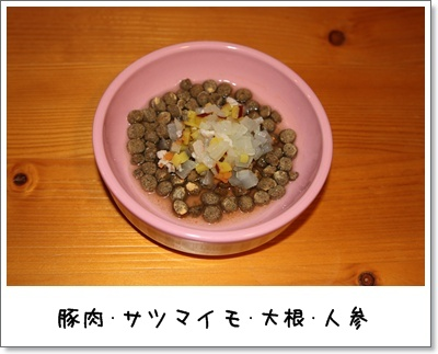 2010_0315_213131AA.jpg