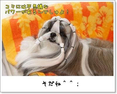 2010_0316_074427AA.jpg