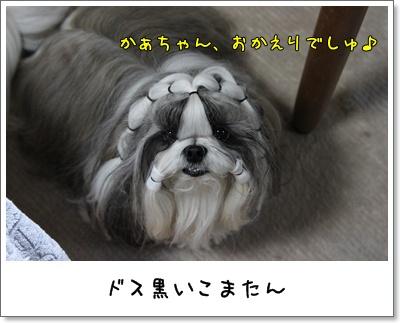 2010_0316_194052AA.jpg