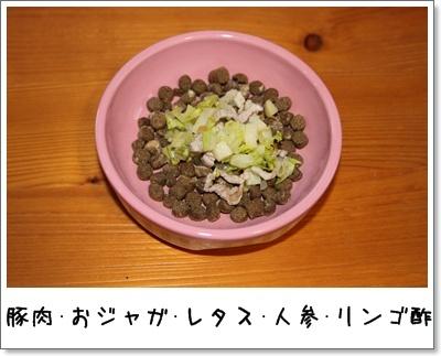 2010_0316_210902AA.jpg
