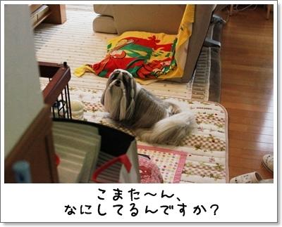 2010_0318_074022AA.jpg