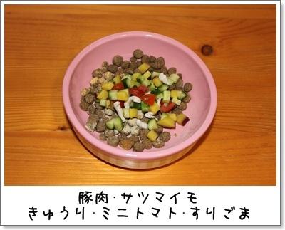 2010_0324_063323AA.jpg