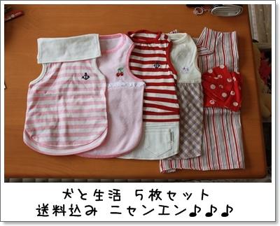 2010_0328_130113AA.jpg