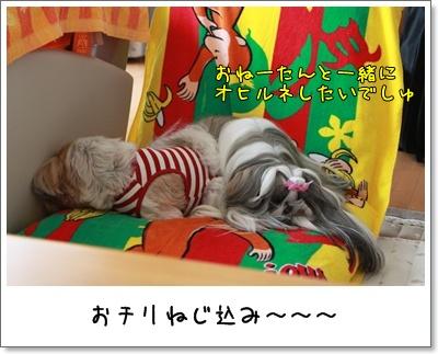 2010_0328_142603AA.jpg