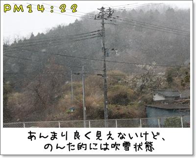 2010_0329_142204AA.jpg
