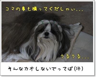 2010_0330_195815AA.jpg