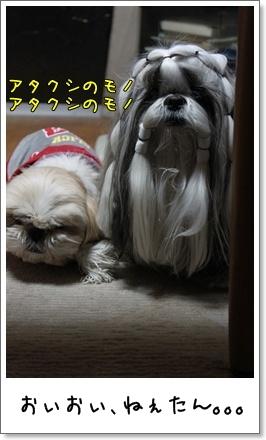 2010_0401_190325AB.jpg