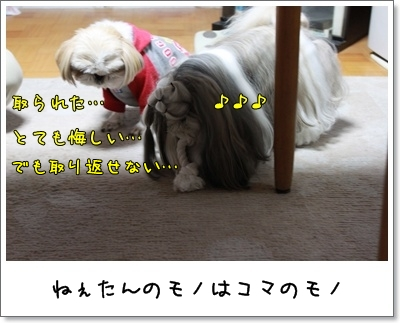 2010_0401_190350AA.jpg