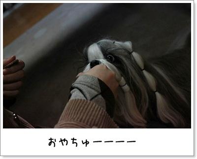2010_0401_191847AA.jpg