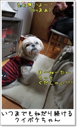 2010_0404_182016AA.jpg