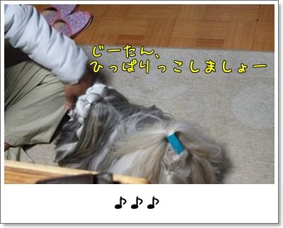 2010_0406_200847AA.jpg