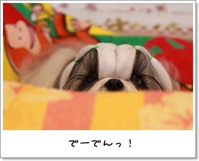 2010_0408_073706AA.jpg