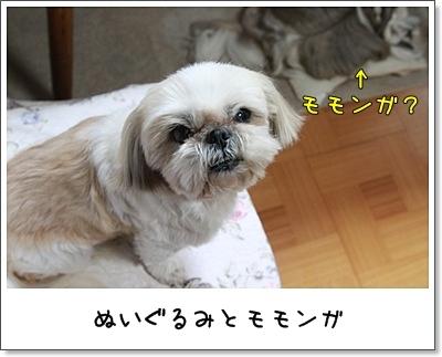 2010_0408_203914AA.jpg