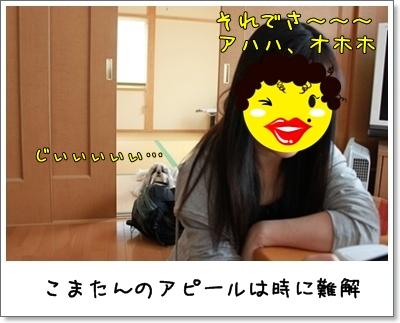 2010_0410_121811AA.jpg