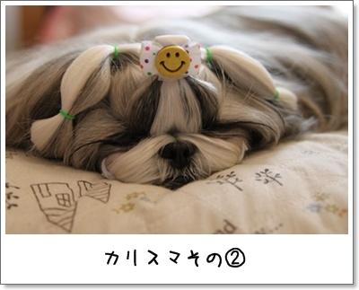 2010_0411_125802AA.jpg
