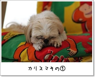 2010_0411_125821AA.jpg