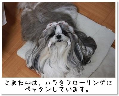 2010_0412_194445AA.jpg