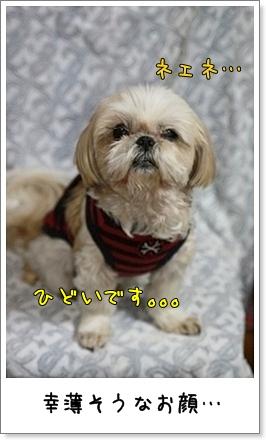 2010_0413_202245AB.jpg