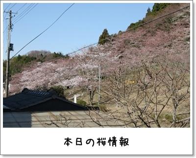 2010_0414_073417AA.jpg